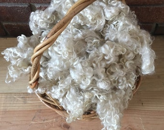 Teeswater, Fleece, Washed, Undyed, White, 2 Ounces, Natural, Fiber, Wool, Spin, Felt, White Curls