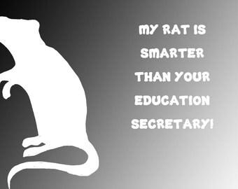 Smart Rat