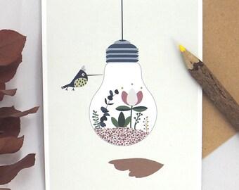 Postcard illustred , terrarium , botanical , bird, flowers , bulb , succulent , humming-bird . Illustration Princesse aux bidouilles .