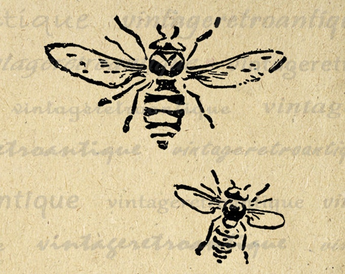 Printable Bee Art Digital Bees Print Graphic Insect Bug Art Bee Illustration Digital Download Vintage Clip Art Jpg Png Eps HQ 300dpi No.1564