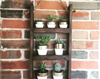 Hanging Shelf Planter