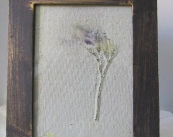 Framed Botanical Art - InPressed Geranium in Botanical Paper