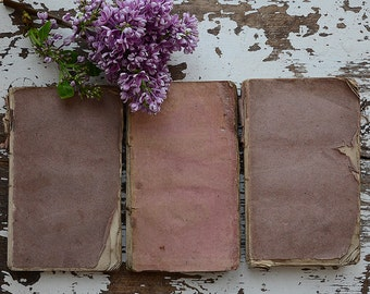 1800's French Books With Beautiful Color Palette (x3)
