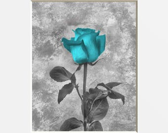 Blue Gray Floral Decor, Blue Rose Wall Pictures, Blue Bathroom Bedroom Wall Decor (8x10 picture matted into a 11x14 white mat)