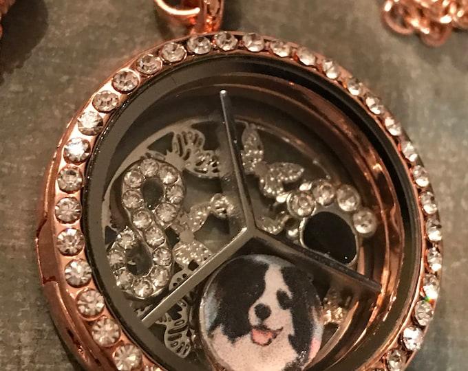 Rainbow bridge pet loss rose gold crystal floating locket- personalized