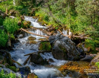 New Mexico Photography, Mountain Stream Print, Flowing Creek, Landscape River, Nature Stream, Fine Art River, New Mexico Art, River Artwork