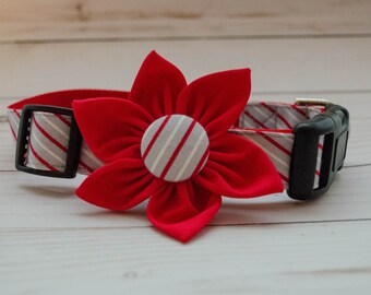 Dog Flower Collar in Red and Gray Pinstripe with  Red Flower
