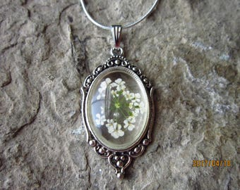 "Real Dried Queen Anne's Lace Cabochon Pendant Necklace -.925 plated 22"" Chain - Great Quality - Unique"