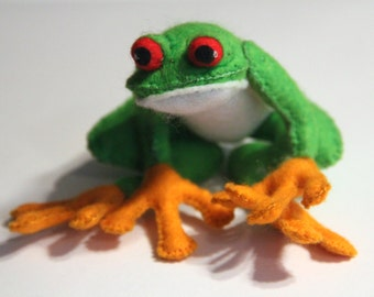 Felt frog, red-eyed tree frog