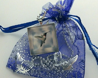 Hummingbird photo pendant necklace, bird necklace , nature necklace
