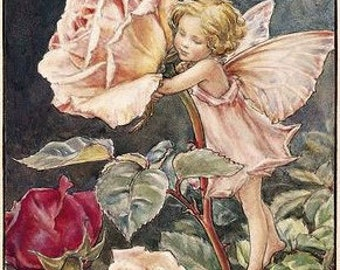 The Rose Fairy - Counted cross stitch pattern in PDF format