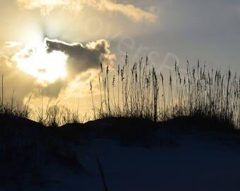 Florida Beach Sunset Photograph Print // Sand Dunes and Sunset Photography // Florida Nature Photograph