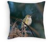 Bird Decor, Hummingbird Cushion, Bird Pillow, Hummingbird Decor, Hummingbird Pillow, Wildlife Pillow, Wildlife Decor, Nature Decor, Woodland