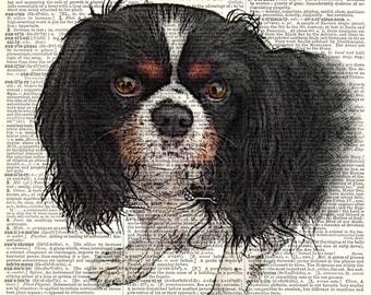 CUSTOM -pet portrait print - Black with Color.  Vintage book page art print.