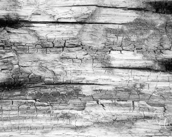 Wood Fine Art Photography Digital Download, Black & White Photography, Stock Photo, Instant Download, Greeting Card, Note Card