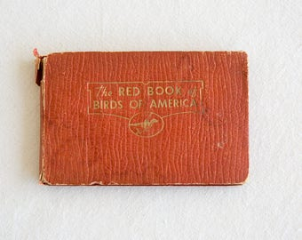 Red Book of Birds