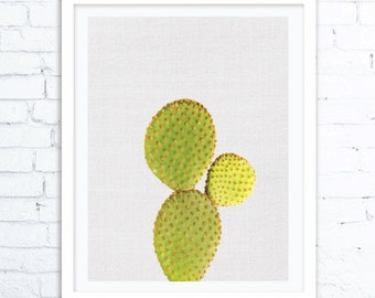 Cactus print, Succulent print, Botanical print, Cactus wall art, Cactus art print, Cacti art, Succulents and Cacti, Cactus nursery print