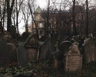"Old Jewish Cemetery - Print 5x7"""