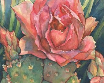Pink Cactus Blossom Art Print/ Southwest Desert Limited Edition Giclee