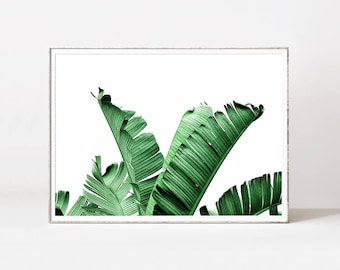 Palm leaf, banana leaf, botanical print, banana leaves, leaf print, banana leaf art, palm print, botanical art, tropical leaf, palm prints