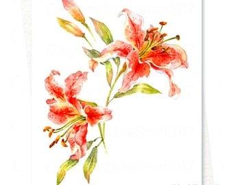 Watercolour LILIUM ENCHANTMENT Flower Art Card, Original Watercolour Flower Painting, Handmade Printed Personalized Original Greeting Card