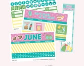 JUNE Monthly View Planner Sticker Set | Fits ECLP or Classic Happy Planner