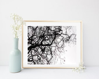 Tree Silhouette, Tree Print, Printable Art, Branches Print, Nature Print, Instant Download, Tree Wall Art, home Decor, Wall decor