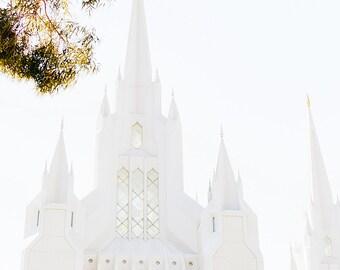 San Diego Temple 5