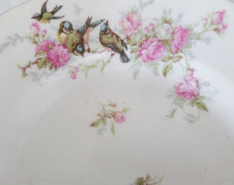Shabby Chic flat with birds and flowers