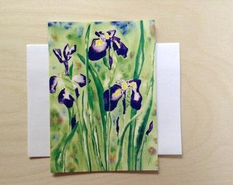 Iris, Watercolor, Art Card, 5 x 7