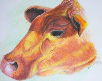 Rustic Cow--Prismacolor Pencils--8x10 Original Drawing