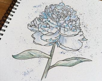 Flower Pen and Colour Pencil A5 Art Print