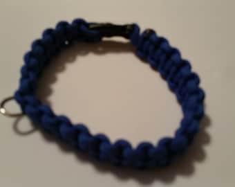 Blue dog collar...