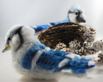 Needle Felted Blue Jay Fledgling