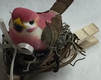 Birdclip (#021)