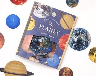 Pictorial Sticker Set - Deco Flake Sticker Set- 10 Designs - 30 Pcs | Planet | Animals