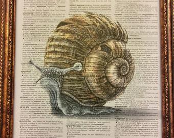 Steampunk Snail Dictionary Art Print