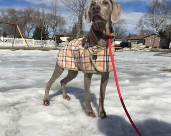 Lofty Dog Blanket