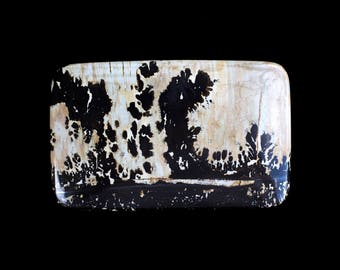 """Natures Paintbrush, A.K.A """"Scenery Stone, Large Cab, Gary Wilson, One of a Kind, Designer Cabochon"""