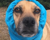 Water resistant Snood for medium size Dog, Softshell Fleece, turquoise, warm snood for dog