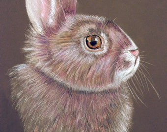 Pastel Pencil portrait of your pet. 9 x 11