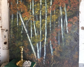 Vintage Oil Painting Birch Trees on Board Extra Large