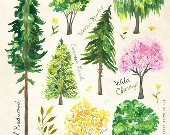 Trees | Nature Chart | Educational Wall Art | Outdoorsy | Katie Daisy | 8x10 | 11x14