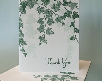 English Ivy Thank You and Blank Note Cards