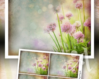 Printable download - GORGEOUS GARDEN SERIES Design No.4 - artwork and greeting cards, for home decor, craft projects, stationery - ArtCult