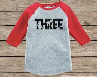 Dinosaur Birthday Shirt - Boys Third Birthday Dino Tshirt - Dino Birthday Shirt - Red Raglan Dinosaur 3rd Birthday Shirt - Dino Three Shirt