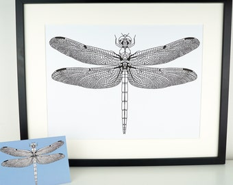 Dragonfly Print, A3 picture, Dragonfly drawing, art print, home decor, Dragonfly poster, A3 Print, large print