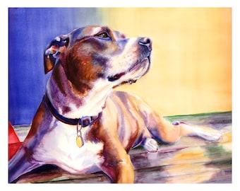 "22x28"" Pit Bull Dog Watercolor Art Poster Print [Pit Bull Painting Pit Bull Watercolor Pit Bull Print Pit Bull Art Pit Bull Art Print]"