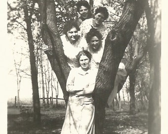 "Vintage Snapshot ""Up A Tree"" Victorian-Era Women Pose In Tree Branches Found Vernacular Photo"