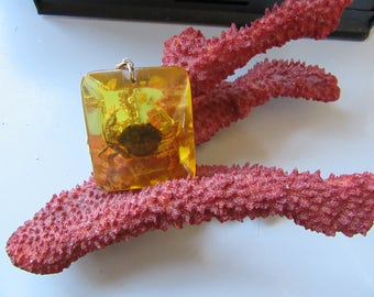 Vintage Crab Encased Amber Colored Lucite Pendant Necklace